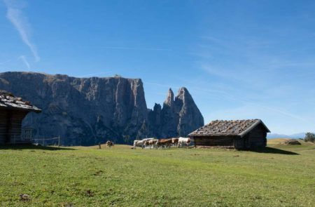 UNESCO-Weltnaturerbes: Südtirols Wahrzeichen