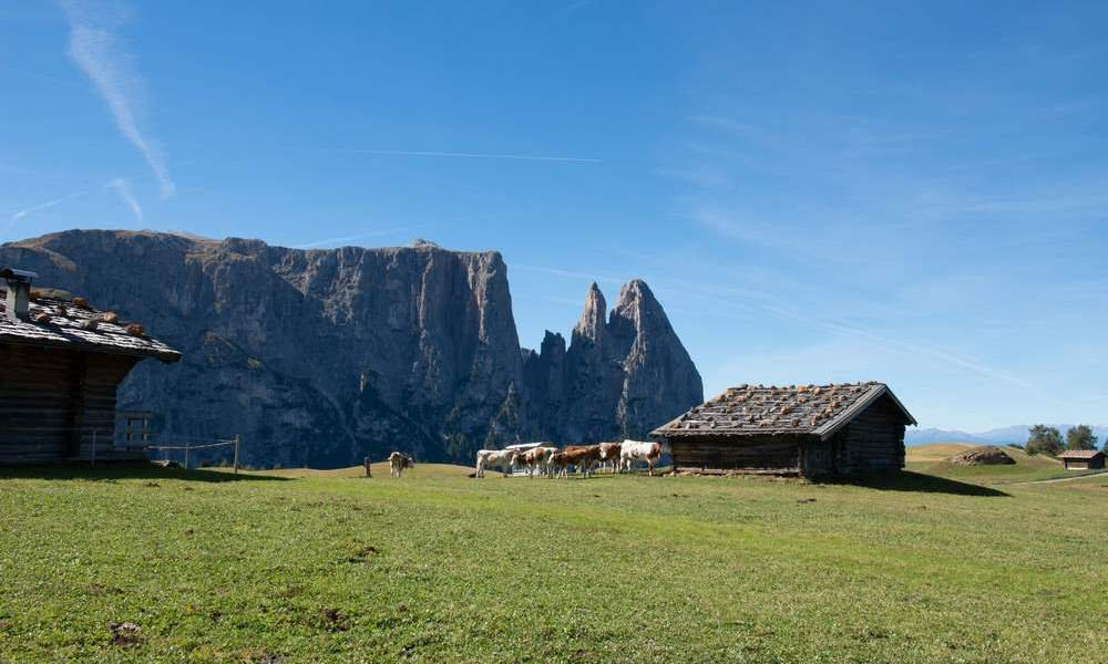 UNESCO World Natural Heritage: South Tyrol's landmark